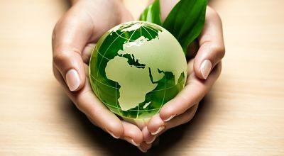 Государственная экологическая экспертиза